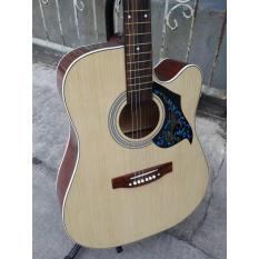 F500 Akustik Gitar Murmer