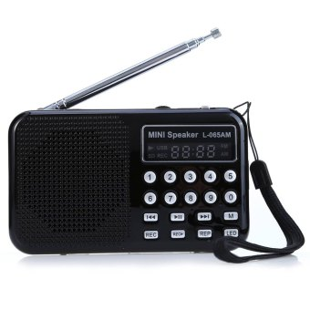 L - 065 Portable AM / FM Radio Music Speaker With USB AUX Audio Playing TF SD Card Slot - Intl
