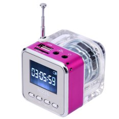 Mini Digital Portable Music MP3/4 Player Micro SD / TF USB Disk Speaker FM Radio Rose