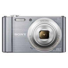 Sony DSC-W810 - 20.1 MP - 6x Optical Zoom - Silver
