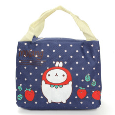 Cute Thermal Picnic Lunch Bag Insulated Cooler Handbag Food Storage Pouch Tote - Intl
