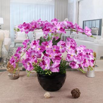 Taman dalam ruangan simulasi pot tanaman perabotan kantor LZNC. Source · Simulasi pot bunga kering