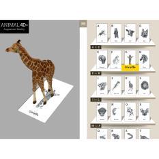 Animal 4D Alphabet Cards / Kartu Abjad 4d Binatang