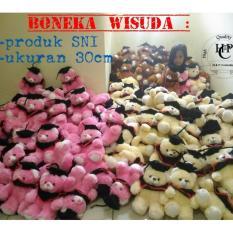 boneka wisuda teddy bear murah