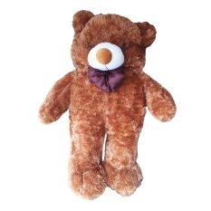 Raja Boneka Boneka Teddy Bear Jumbo Coklat