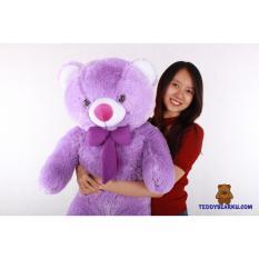 Teddy Bear - Boneka Teddy Bear (Beruang) Jumbo 1 Meter Khas Bandung [Cream, Coklat, Ungu, Merah, Hijau, Pink, Putih]