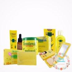Cream Temulawak Original - Paket Cream Temulawak Asli ( Cream, Sabun, Toner, Serum dan Bedak )