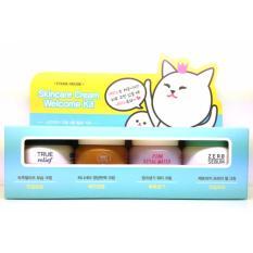 Etude House Skincare Cream Welcome Kit 4 items
