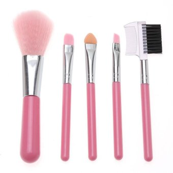 LALANG 5Pcs Mini Makeup Brush Set Cosmetic Beauty Tool Kit (Pink)