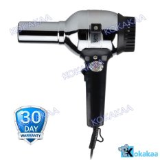 Rainbow Travel Hair Dryer Type 101 - Silver