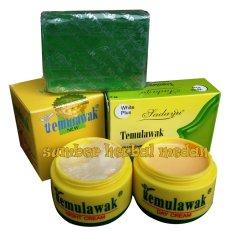Temulawak Paket Cream Siang&Malam Plus Sabun Sedayu Hijau Original