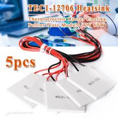 5X TEC1-12706 Heatsink Thermoelectric Cooler Peltier Plate Module 12.60W TE220