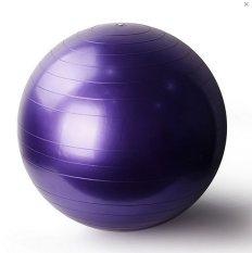 Gym Ball Bola Senam - Free Pompa - Ungu