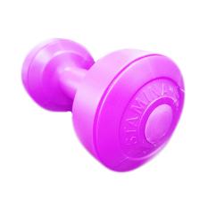 Stamina Dumbbell Plastic 1 kg - Ungu