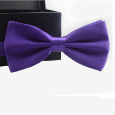Classic Fashion Novelty Mens Adjustable Tuxedo Wedding Bow Tie Necktie Purple