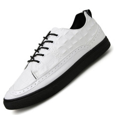 Seanut Men's Fashion Casual Shoes Crocodile Pattern Leather Skater Shoes (White)