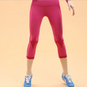 Sportwear Fitness Shorts Running Capri Pants