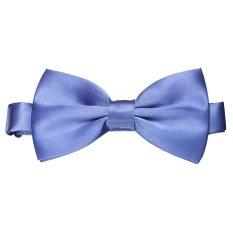 Sunwonder Classic Style Men Wedding Necktie Bow Tie Adjustable (Blue)