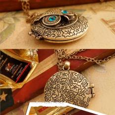 Antique Bronze Blue Eye Owl Locket Retro Long Necklace Pendant (Intl)