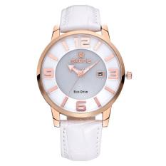 CITOLE SKONE Newest Luxxury Solar Energy Date Watch Women Montre Femme Charge Leather Casual Quartz Watch Bracelet Wristwatch Montre (Blue)
