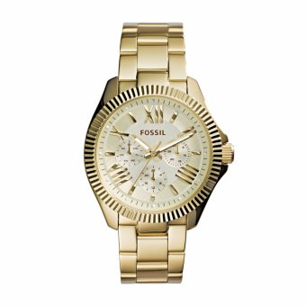 Fossil Cecile Jam Tangan Wanita - Stainless - Gold - Fossil AM45701