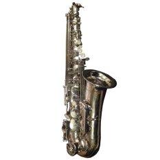 Strava Saxophone Alto - Silver