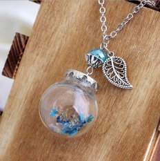 The New Fashion Boutique Glass Dried Necklace DIY Long Necklace Decorated With Sweater Chain - Ca143-C - Intl