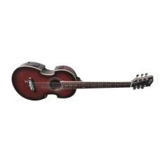 Cc Guitar MV222 Akustik-Elektrik [Natural-Matte]