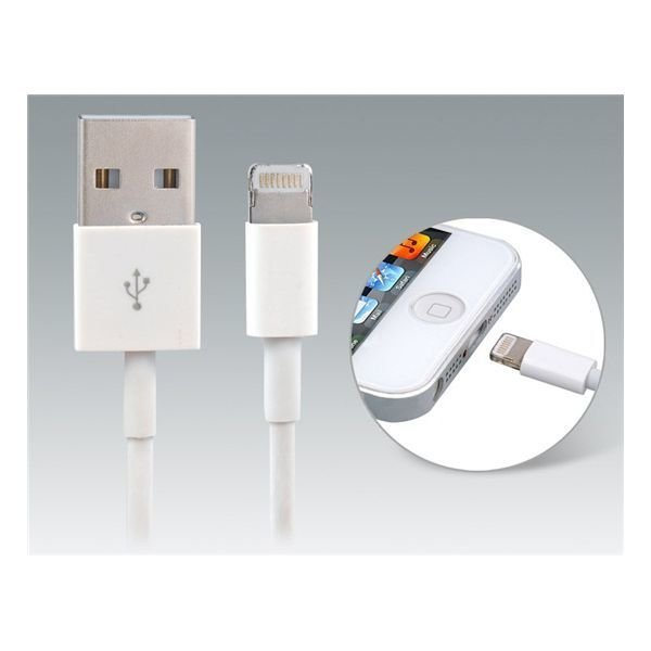 Generic USB Data Charging Cable for iPhone 5 iPod touch 5 iPod Nano 7 iPad mini/4 1.0 m Search (White)
