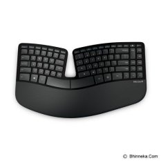 Microsoft Sculpt Ergonomic Desktop Port - Hitam