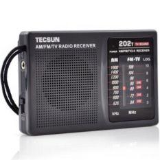 TECSUN Multi-band FM / AM And TV Audio Channel Black Radio Receiver R-202T