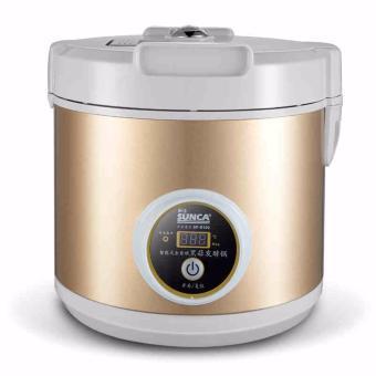 Black Garlic Machine Ferment Zymolysis Zymosis Garlic HouseholdAppliances for Kitchen Food Processor Tools - intl
