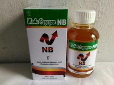 Madu Pegagan NB (Nutribrain) F1 175 Gr
