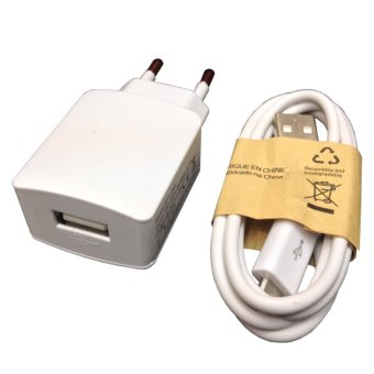 Digbanks Travel Charger for Oppo Neo 5 - Putih - 2 Ampere