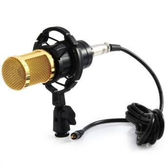 Harga Taffware Professional Condenser Studio Microphone With Shock Proof Mount - BM700