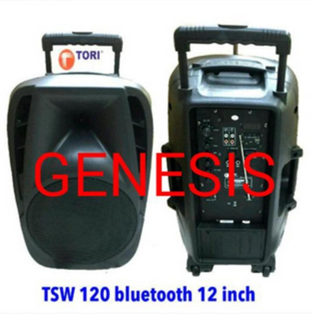 ... NEW SPEAKER PORTABLE WIRELESS PA AMPLIFIER TORI 15 inch TSW 150 ...