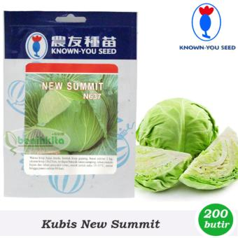 Benih - Bibit Kubis - Kol New Summit (Known You Seed)