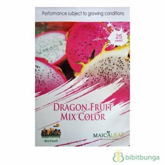Bibit Bunga Benih Buah Naga Mixed 25 Biji - Maica Leaf