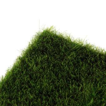 ... BolehDeals mikro lumut ornamen pemandangan halaman rumput Imitasiuntuk dekorasi taman miniatur diseduh sendiri - 4 ...