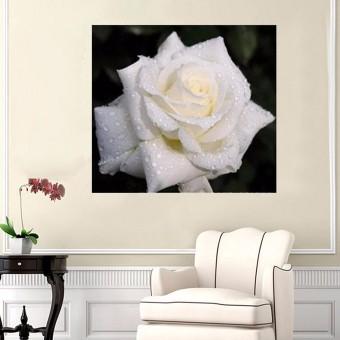 harga Bunga mawar bordir 5D DIY lukisan berlian Cross Stitch panas dinding dekorasi rumah - Internasional Lazada.co.id