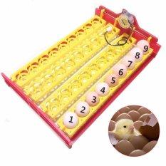 EGC 220 V Otomatis Telur Turner 36 Ayam Bebek Burung Puyuh Unggas Inkubator Nampan-Internasional