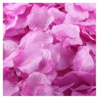 Harga Coconie 1000pcs Silk Rose Artificial Petals Wedding Party Flower Favors Decor Purple