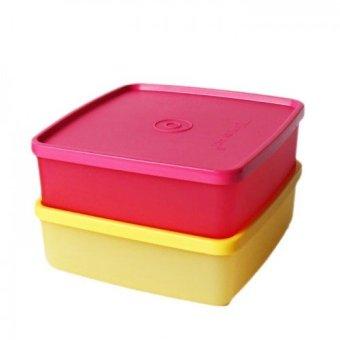 Tupperware Duo Cantik Tempat Makan Hijau Botol Pink Cek Harga Source Tupperware Large .