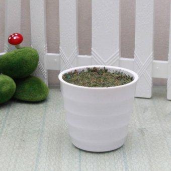 Vas Bunga Melamin Bulat 10cm + Busa + Lumut Murah
