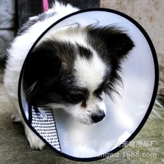 Kucing anjing menyediakan anti gigitan hewan peliharaan yang nyamankerah menutup leher keselamatan kerucut .