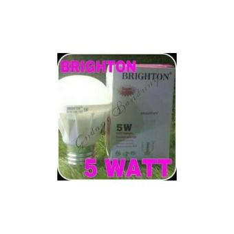 Lampu Led Brighton 5 Watt