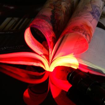 Mini portabel lampu obor senter sinar UV lampu (merah terang) - 2