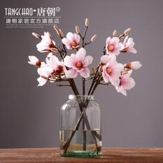Decoration Archives Establish Production Source · Modern Yang Sederhana Dan Transparan Gelas Vas