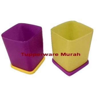Tupperware summer Crispy (2 pcs) Ungu_kuning