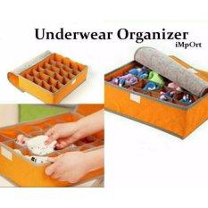 UNDERWEAR STORAGE 24 GRID BOX / tempat simpan celana dalam / kaos kaki